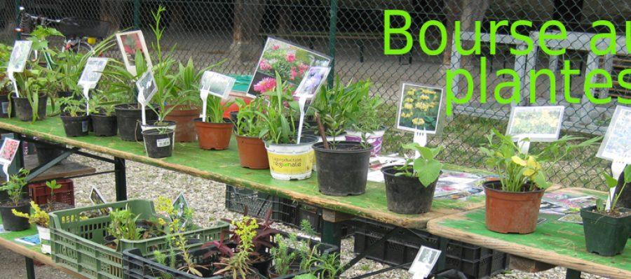 bourse plantes