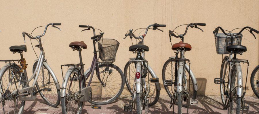 vélos.jpg!d